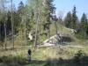 anin-028-2011