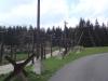 anin-031-2011