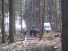 jarnich-1000-iii-008-2012