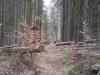 jarnich-1000-iii-011-2012