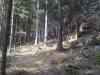 jarnich-1000-iii-013-2012